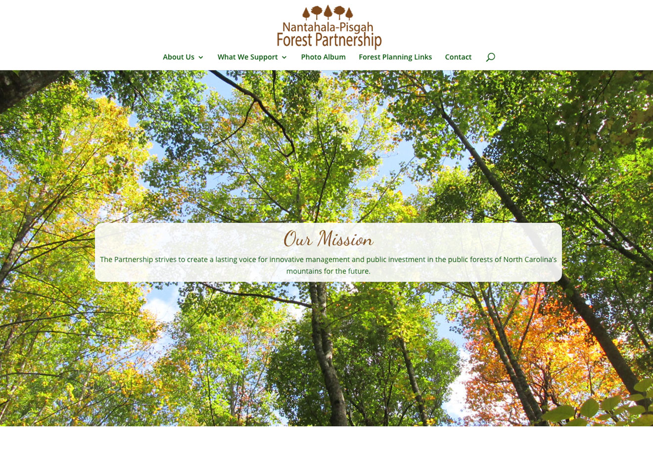 Screenshot of Nantahala Pisgah Forest Partnership home page